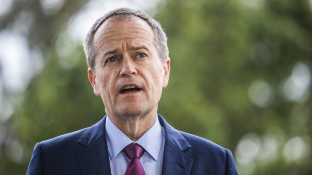 Article image for Bill Shorten concedes, Coalition will form government