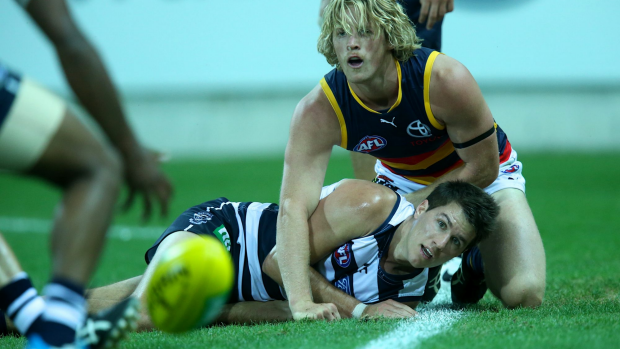 Article image for Kane Cornes blasts Rory Sloane suspension