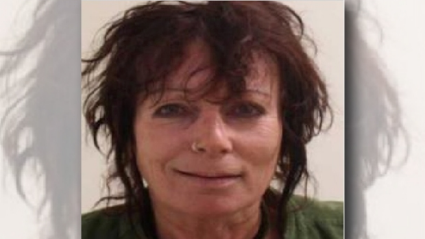 Article image for Police search for missing Humevale woman Debra Barbu