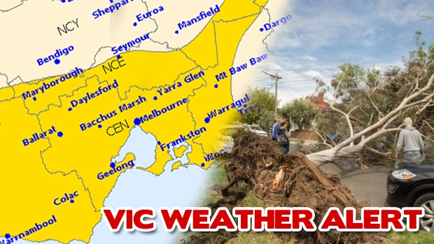 Article image for Victoria hit by wild winds again