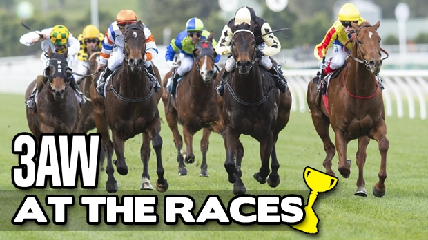Article image for 3AW at the 2016 Melbourne Cup Carnival