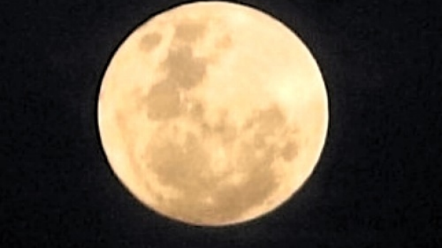 Article image for PICTURES: 3AW listeners send in their best 'supermoon' photos