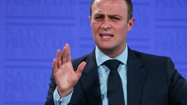 Article image for Tim Wilson rejects claims he seriously predicted a Labor election victory
