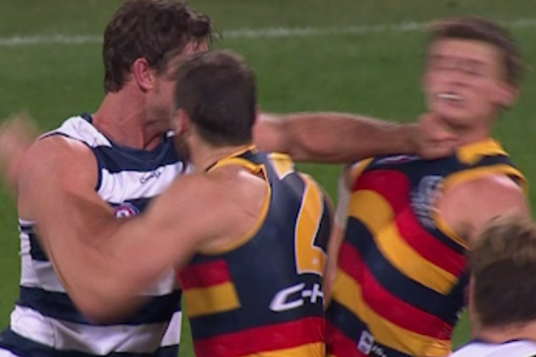 Article image for Tom Hawkins suspended for jumper punch