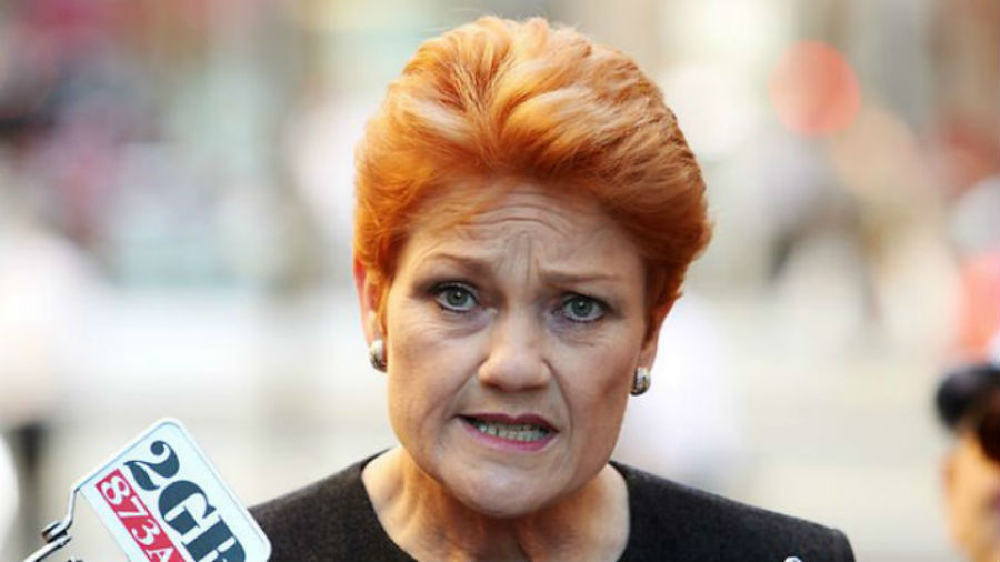 "Article image for Pauline Hanson claims foreign interference and says she'll take ""appropriate action"" against journalists"