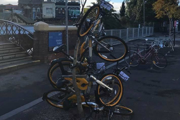 Article image for Obikes to be impounded: Lord Mayor