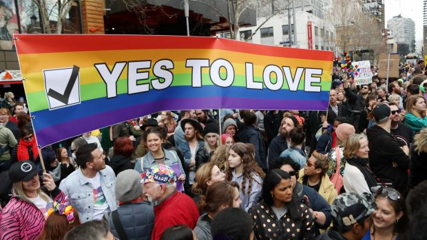 Article image for Same-sex postal vote given the go-ahead in court