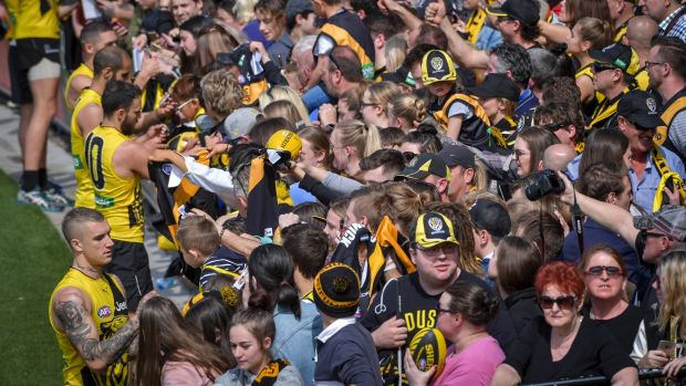 Article image for Tiger army set to be locked out of open training