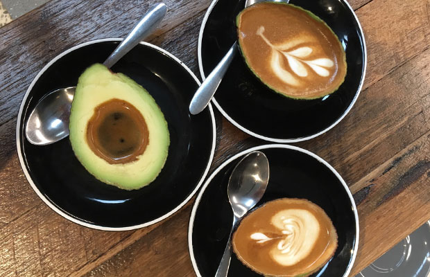 Article image for Denis Walter is told about avocado coffees!