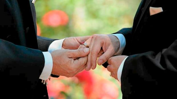 Article image for City of Sydney votes to offer free weddings – to same-sex couples only