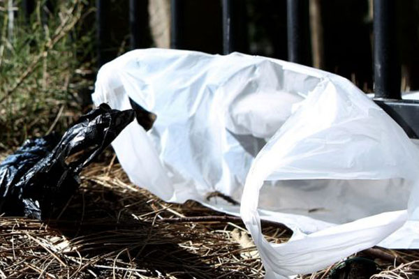Article image for Single use plastic bags to be banned in Victoria