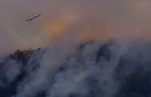 Article image for Bushfire in the Bunyip State Park