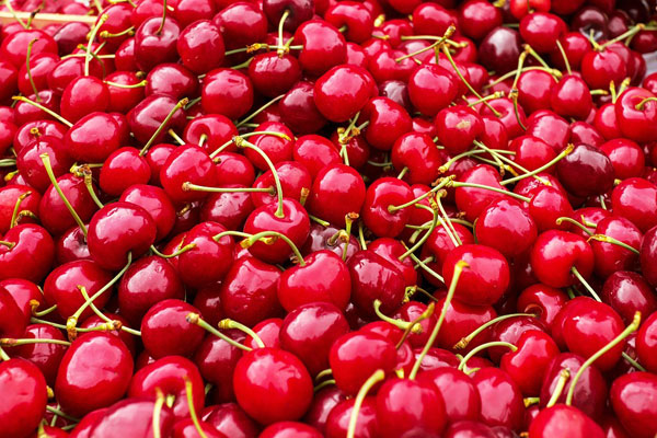 Article image for Cheap cherries: Bumper crop prompts price plummet in time for Christmas