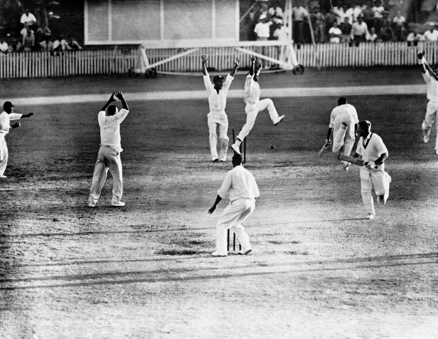 Article image for The unlikely story behind cricket's most iconic photo