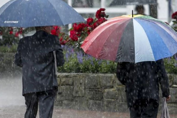 Article image for Cold start for racegoers heading to the Cup today