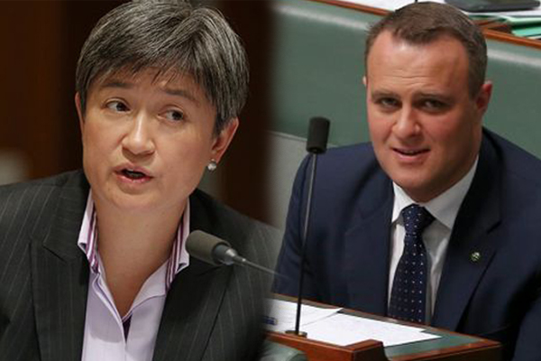 Article image for Federal MPs outline their boundaries for gay marriage exemptions