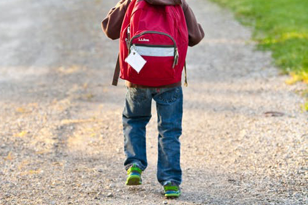 Article image for Ross and John call bulltish on a study about walking to school