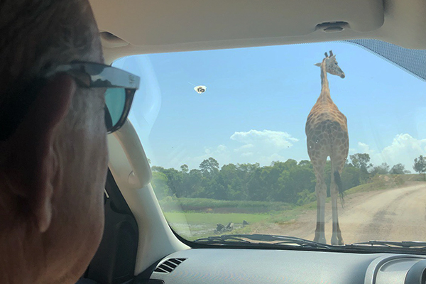 Article image for VIDEO: Ross and John at the Werribee Zoo