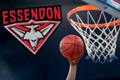 Essendon pushing for NBL team, linked with big name signing