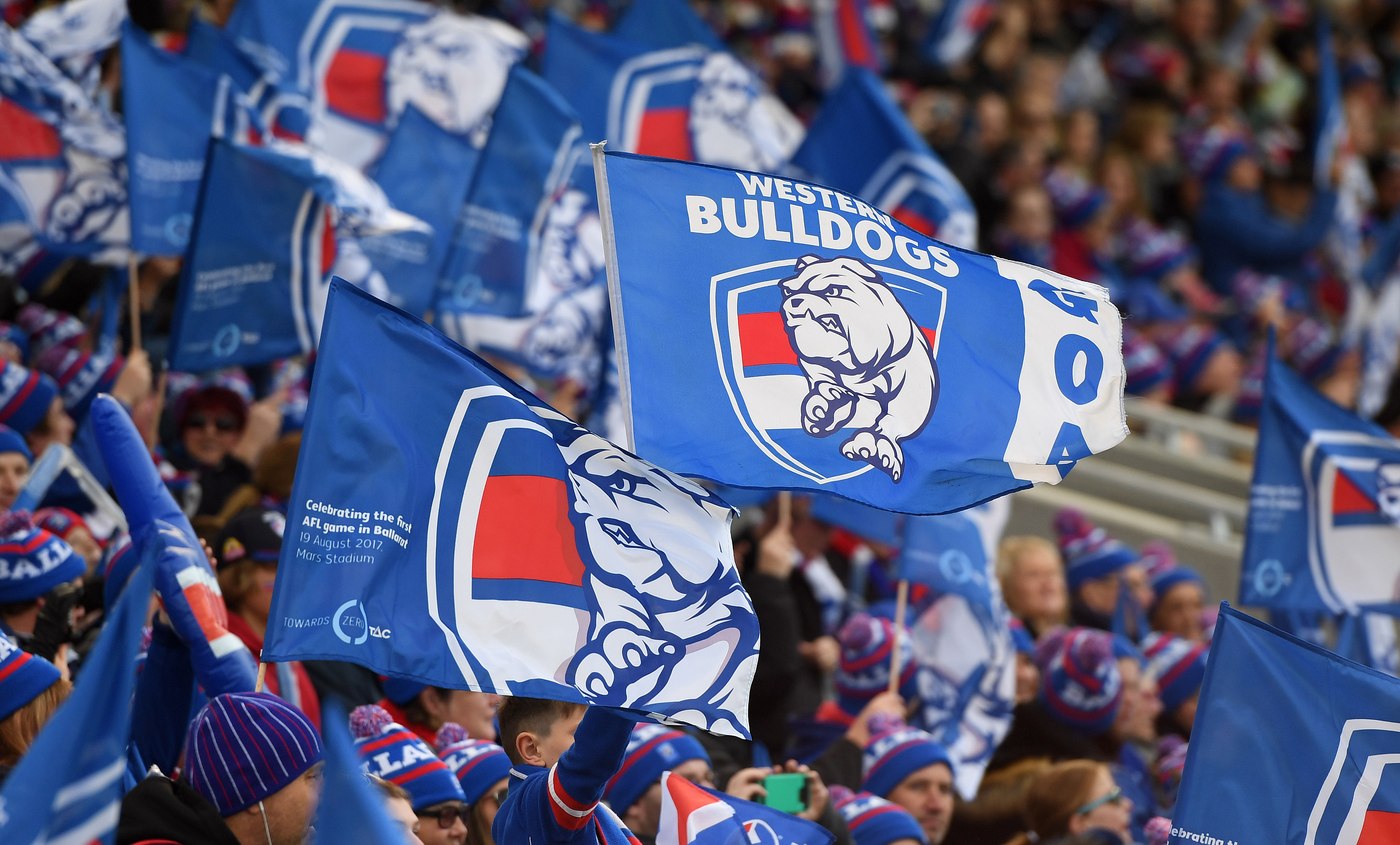 Article image for All is not well at the Western Bulldogs, reveals Mick Warner