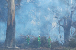 Devastated: At least 10 homes lost in south-west fires