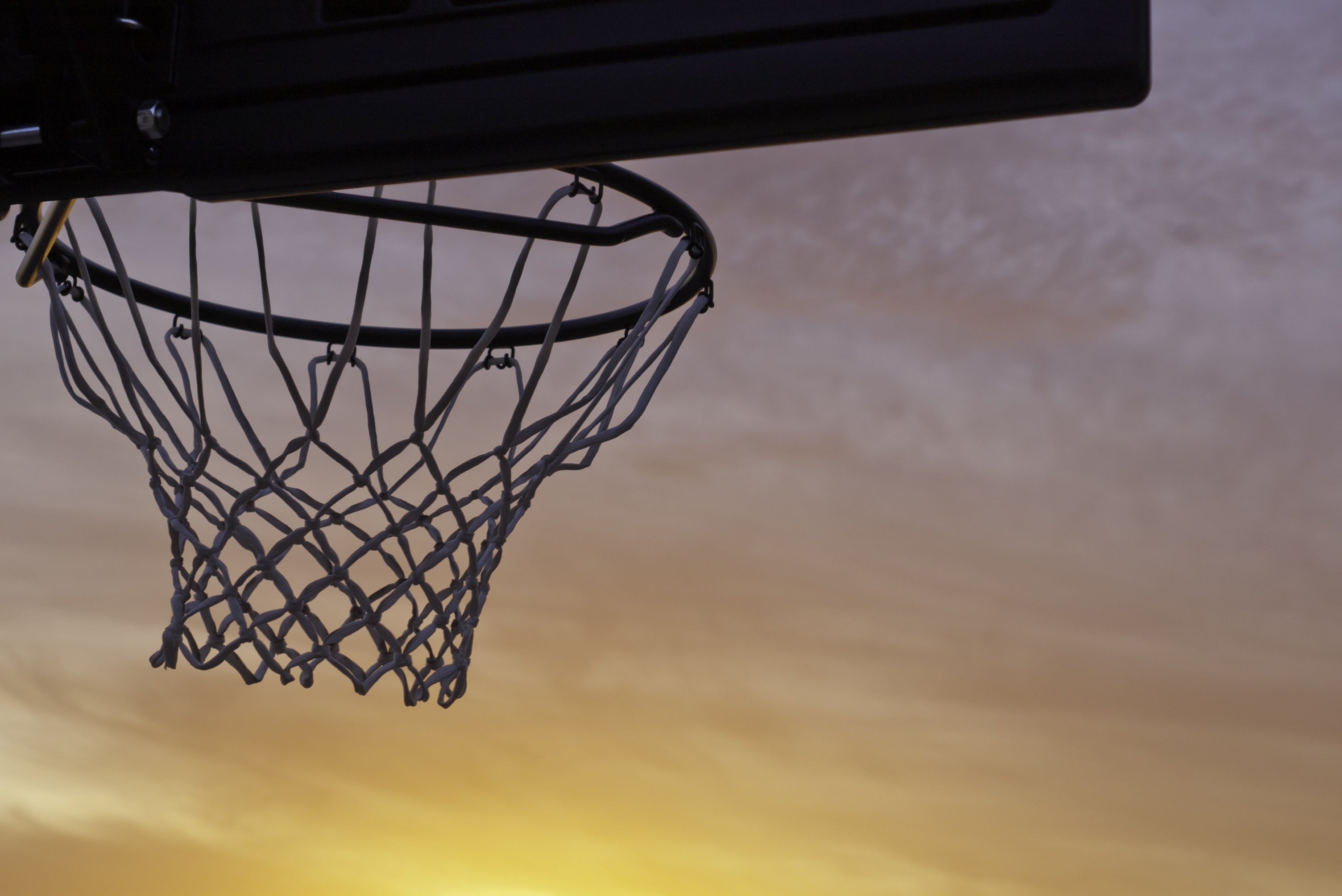 Article image for Council bureaucracy hits local basketball courts