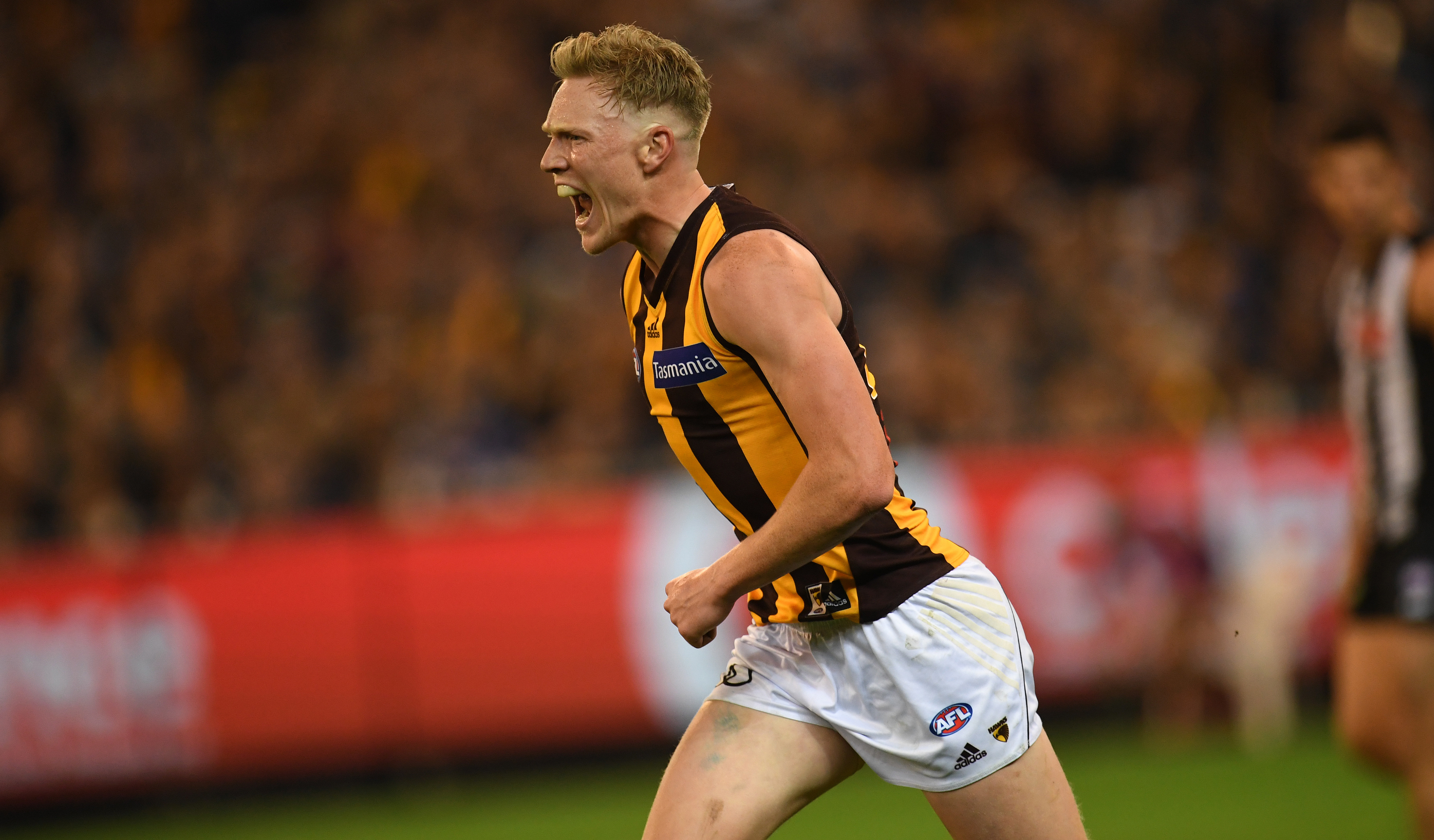 Article image for The penny is dropping for Sicily, says Hawk skipper