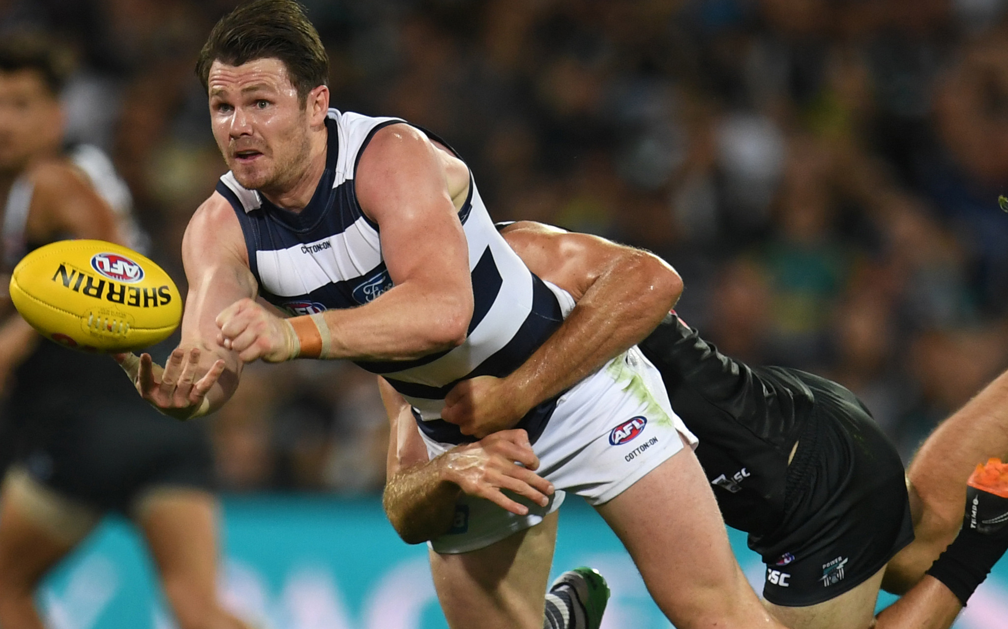 Article image for Cats claw their way to 34-point win over Port Adelaide