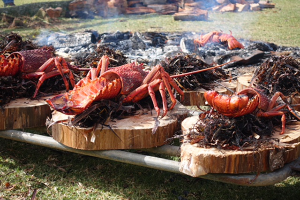 Article image for Kate visits Flinders Island for the inaugural Food and Crayfish Festival