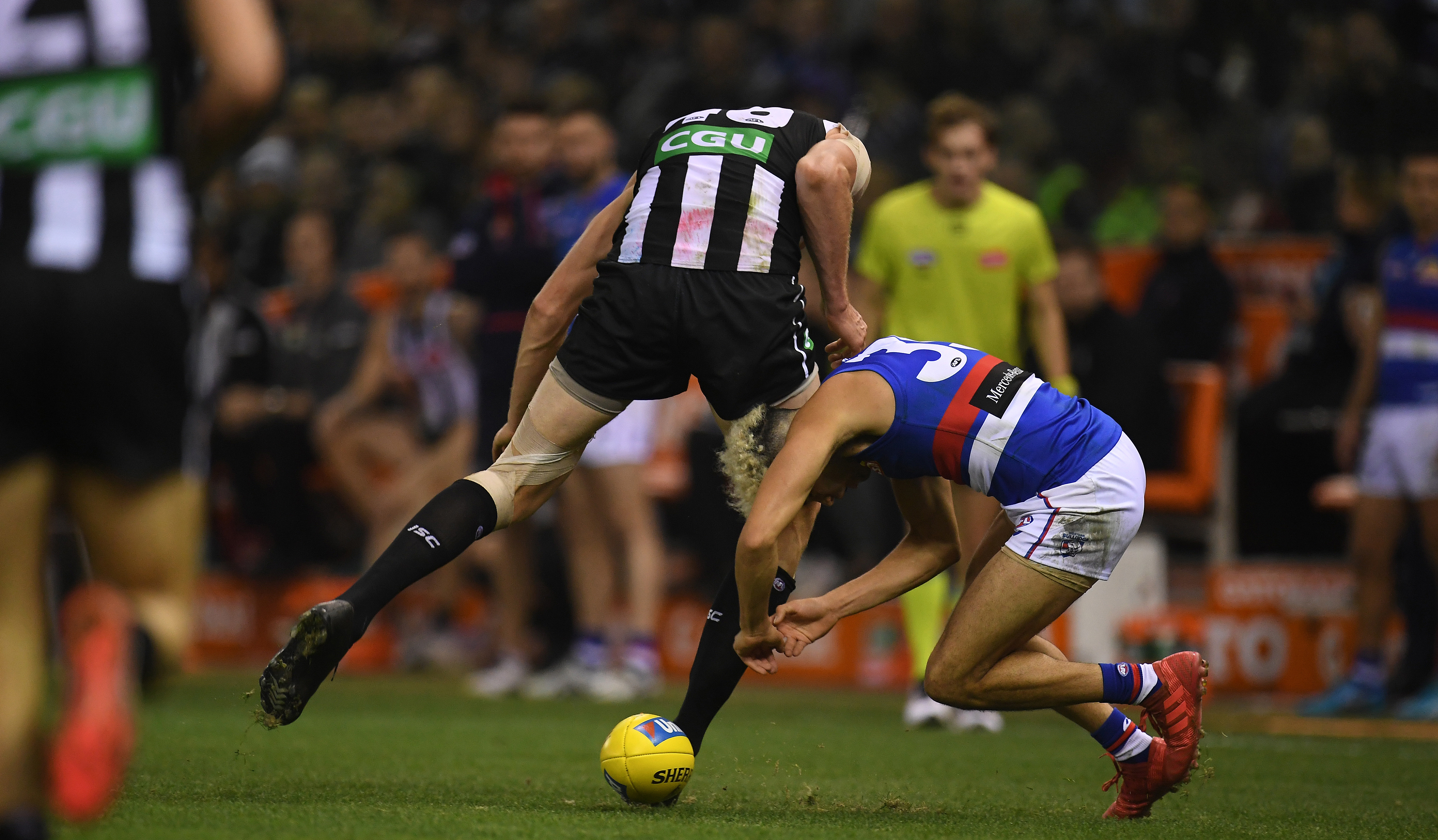 Article image for Mason Cox escapes suspension for hit on Johannisen