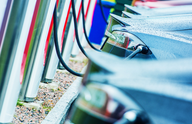 Article image for Victoria 'should jump' at electric car industry opportunity