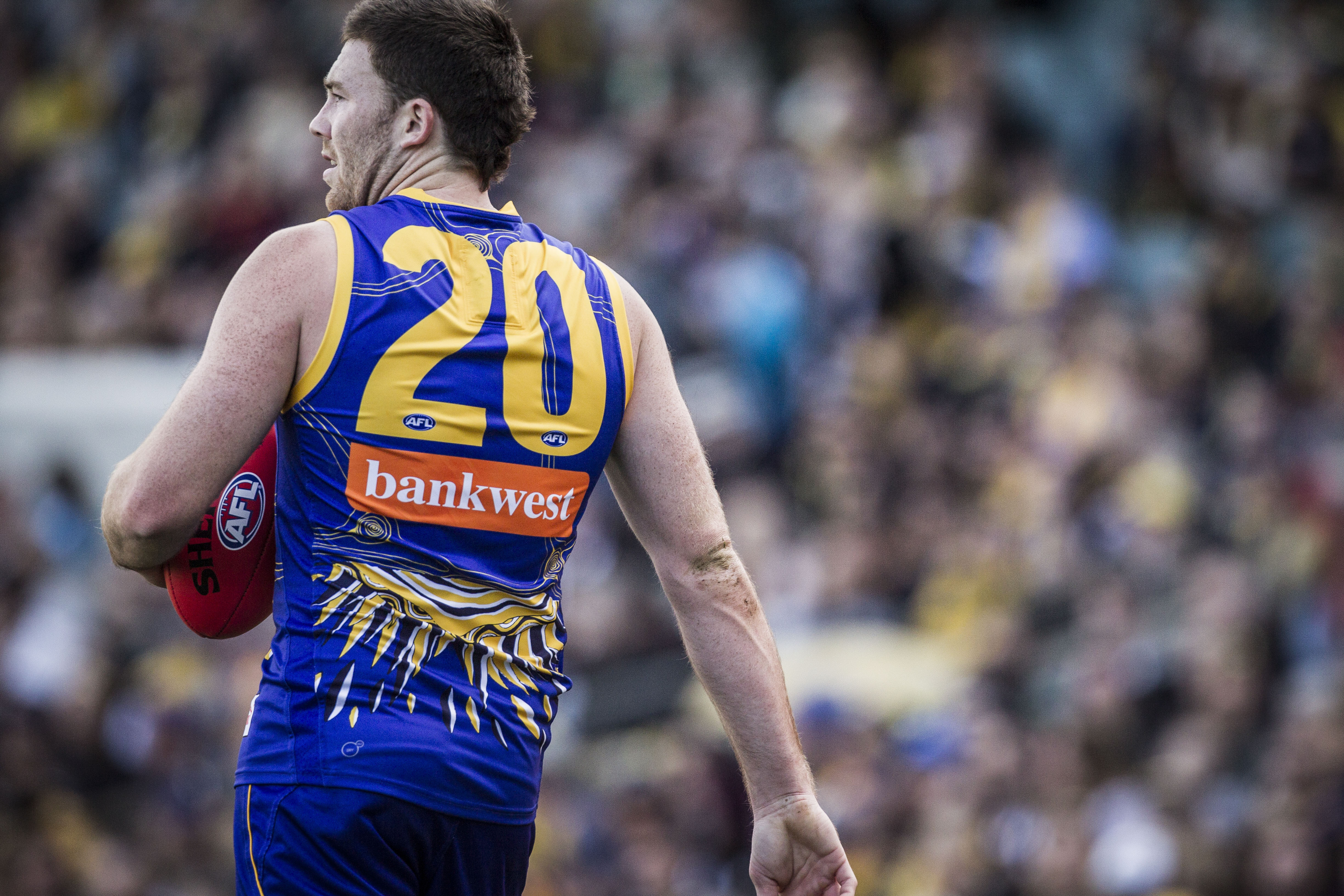 Article image for The reason Jeremy McGovern spent so much time on the bench while Buddy dominated