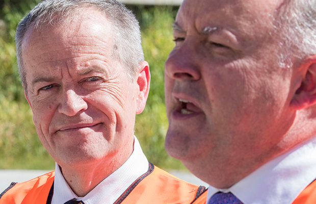 Article image for Anthony Albanese 'positioning himself' as alternative to Bill Shorten