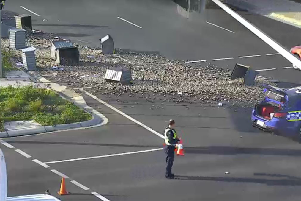 Article image for Mess strewn across road after Oakleigh truck prang