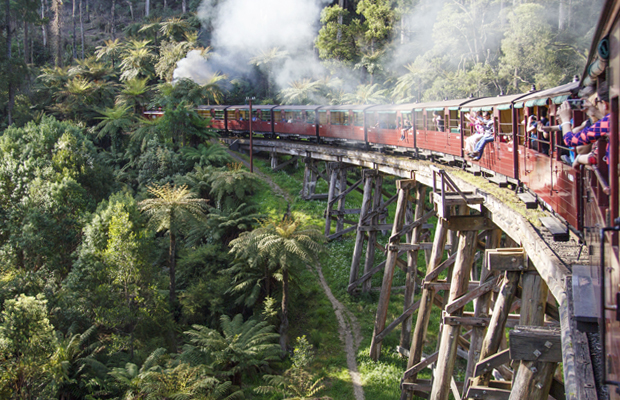 Article image for Rumour File: Board dismissal earmarked in 'distressing' Puffing Billy report