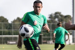 Tim Cahill has played his last game for the Socceroos