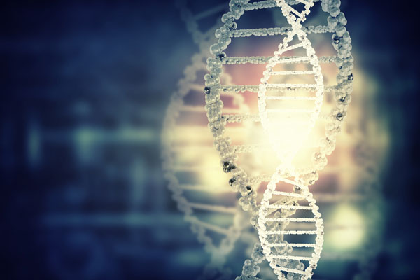 Article image for The 'issues' with police DNA from online genetic databases in criminal cases