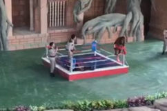 'Dangerous, demeaning': Video shows orangutans fighting in Cambodian zoo