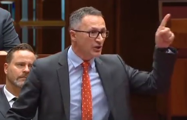 Article image for Greens leader doubles down on THAT speech