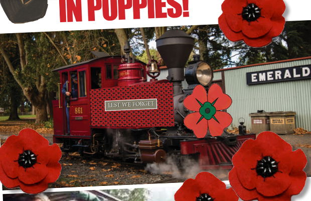 Article image for How you can help cover Puffing Billy in poppies on Remembrance Day!