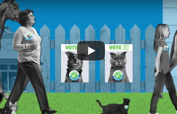 Article image for Video: The RSPCA is mobilising in a new political call to arms