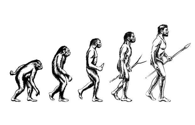Article image for Homo erectus died out because he was lazy, didn't adjust to climate change