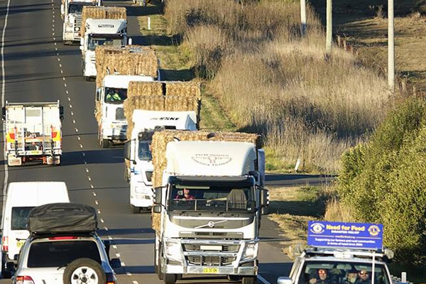 Article image for Truckloads of Tassie hay being driven across to help drought-stricken NSW farmers