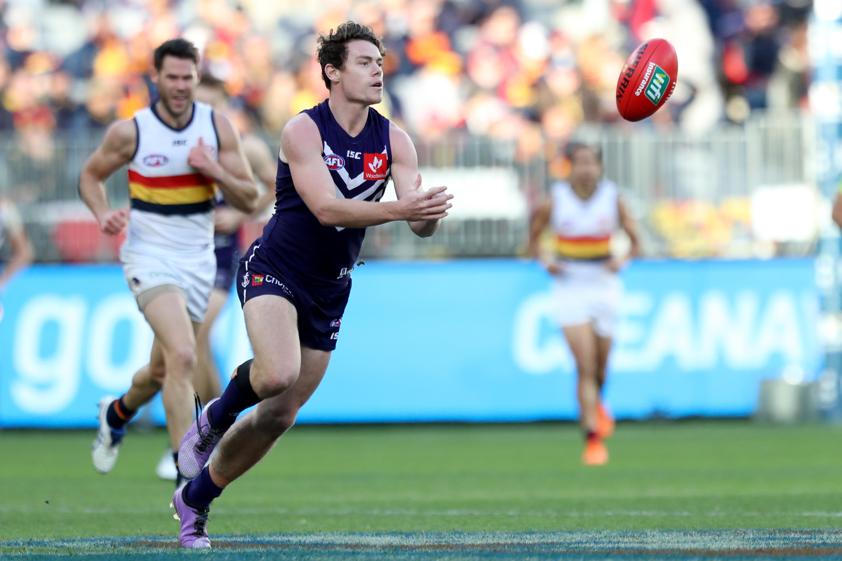 Article image for Fremantle CEO not worried about opposition interest in Lachie Neale