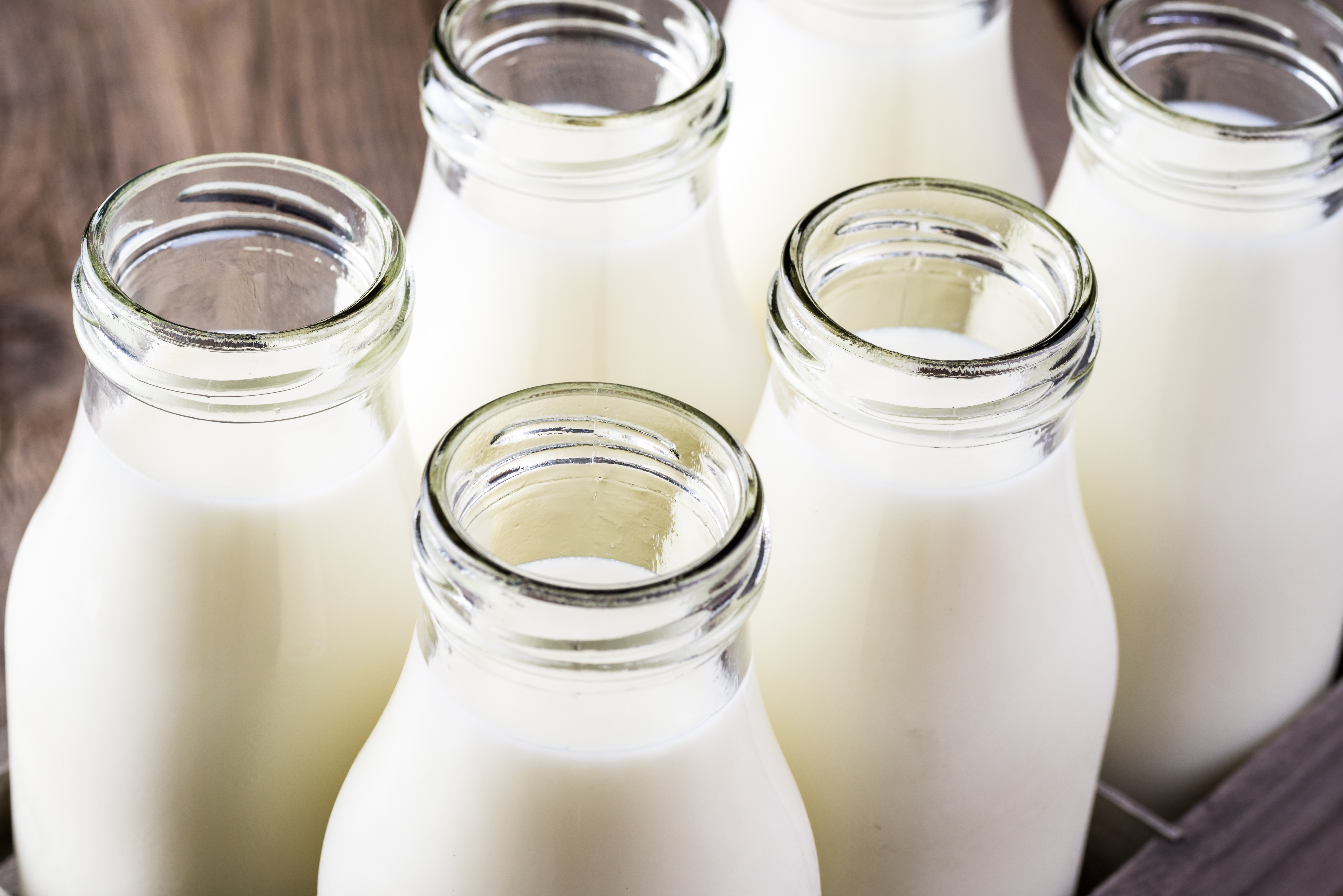 "Article image for Dairy farmer calls for ""longer-term"" help amid milk pricy levy initative"