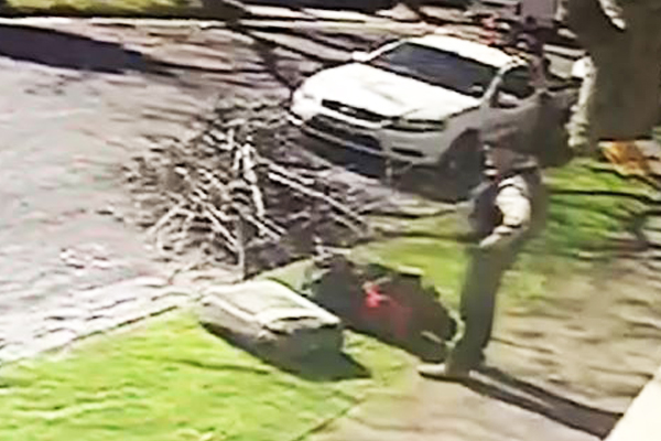 Article image for VIDEO: Arborist has valuable gear stolen while working in Brighton