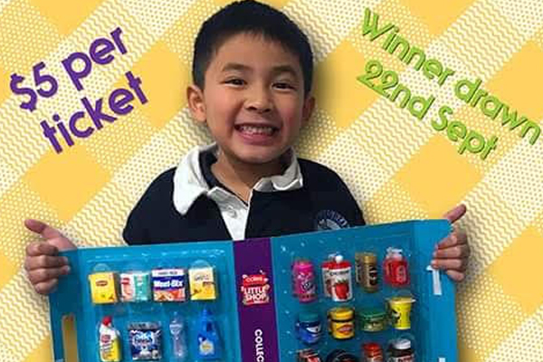 Article image for Little boy selling his Coles mini shop collectables to raise money for Royal Children's Hospital