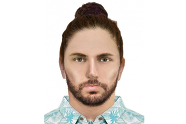 Article image for Police hunt man after sex attack in mosh pit at music festival in St Kilda