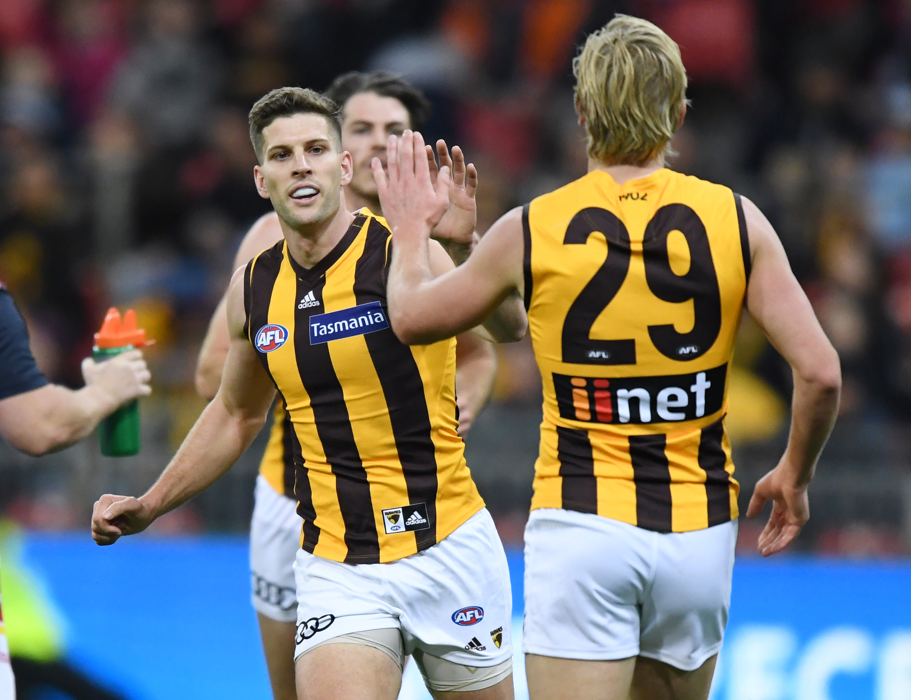 Article image for Hawthorn premiership player retires after being delisted