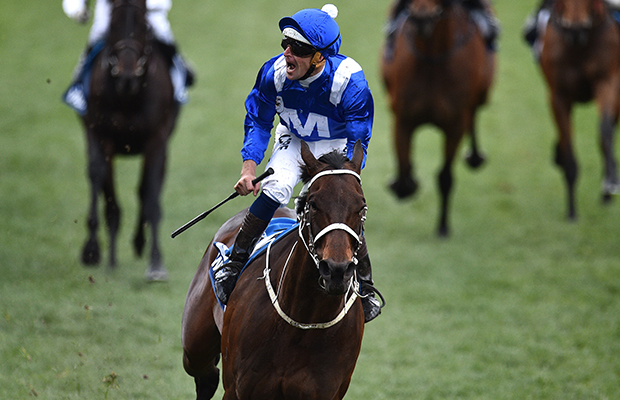 Andrew Rule explains the magic of Winx